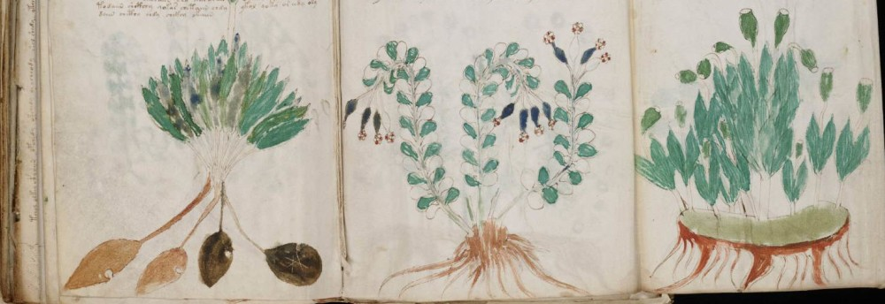 The Voynich Manuscript: